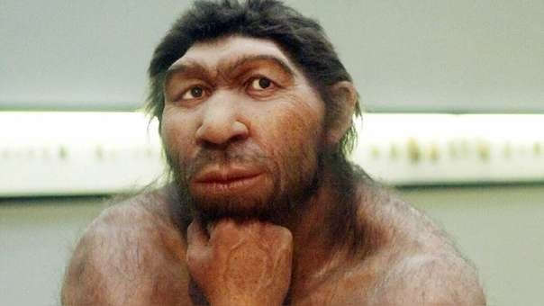 Representación de un neandertal (referencial)