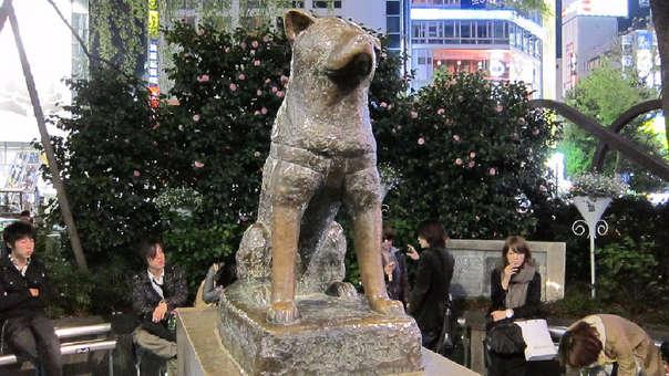 Estatua de Hachiko en la estación de Shibuya