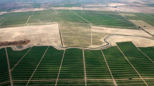 El proyecto Chavimochic III permitirá incorporar 30,000 hectáreas y 40,000 puestos de trabajo de manera inmediata a la conclusión de la presa Palo Redondo.