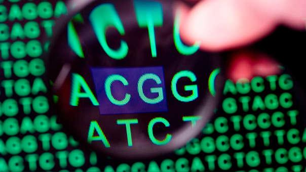 Las sustancias químicas que rodean a las secuencias genéticas son las que se pueden heredar.