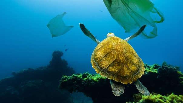 Residuos plásticos al océano