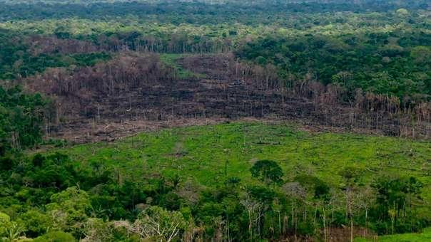 Deforestación en bosques tropicales de Latinoamérica