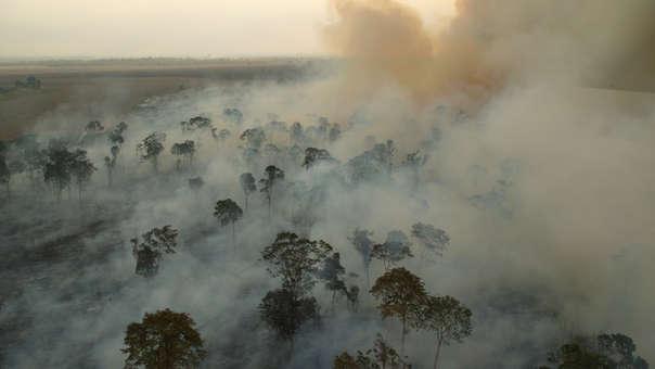 Quema de bosque para soya en Brasil