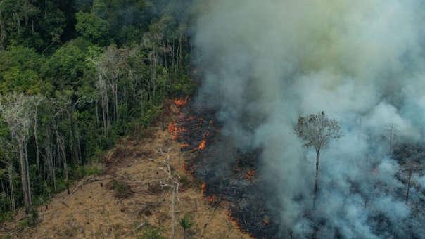 Incendio forestal en Rondonia (Brasil)