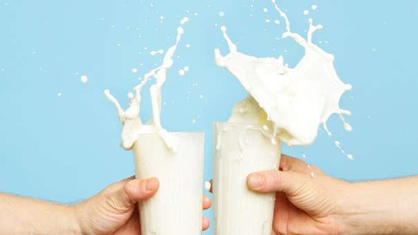 La normativa peruana permite el uso de leche en polvo en la elaboración de la leche evaporada.