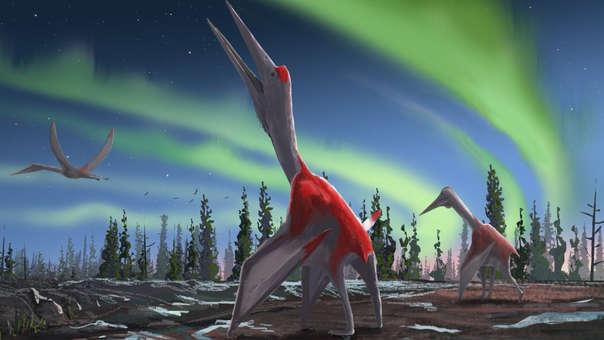 Nueva especie de Pterosaurio gigante