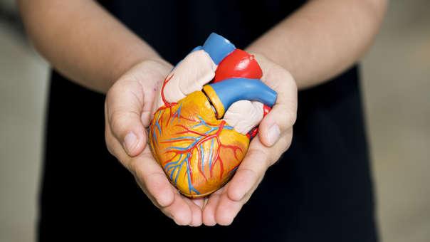 ¿Eres donante? Así se asignan los órganos y tejidos donados