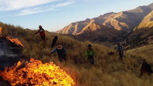 Incendios forestales se registraron en distritos de la provincia de Canchis.