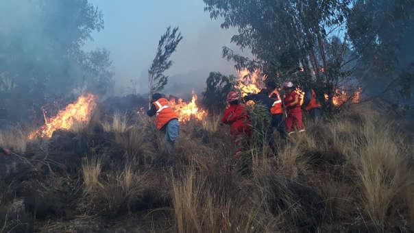 Incendio forestal fue controlado.