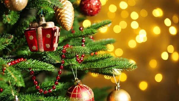 Con motivo de las fiestas navideñas, las empresas de manera gratuita entregan a sus trabajadores determinados bienes como canastas, pavos, panetones, entre otros.