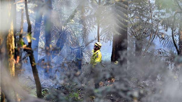Australia ha registrado los peores incendios forestales producto de los efectos del cambio climático.