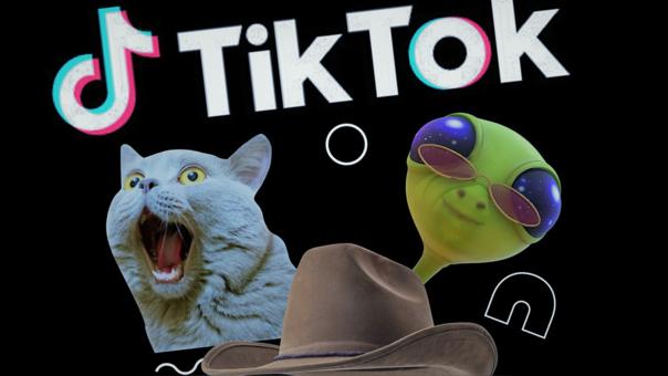 TikTok en problemas con la US Navy