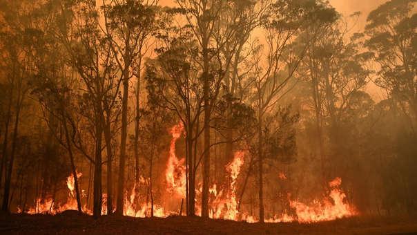 Metallica donó dinero a bomberos de Australia