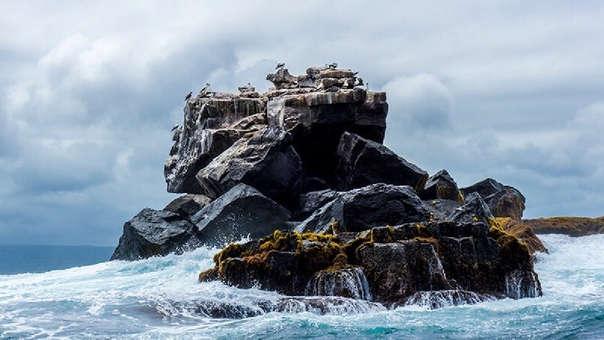 Roca en las Islas Galápagos