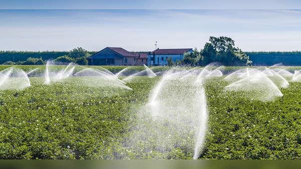 Según estimó la FAO, el 70% de la huella hídrica mundial está relacionada a los alimentos.