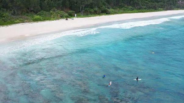 Las playas de arena ocupan más de un tercio de la línea de costa mundial.