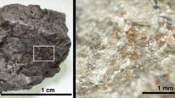Fragmento del meteorito marciano ALH 84001 y área aumentada dond