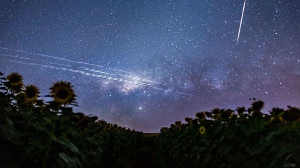 La constelación de satélites Starlink captada sobre el cielo de Brasil.