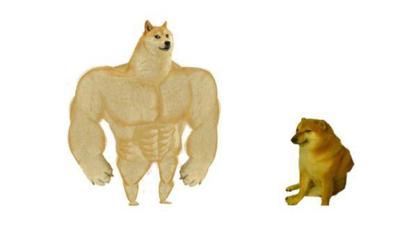 Swole Doge vs. Cheems
