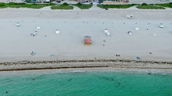 Los canales de televisión locales publicaron imágenes tomadas desde el aire de un grupo de cuatro tiburones moviéndose muy cerca de la orilla.