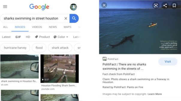 Etiquetas de 'fact check' en Google Imágenes.