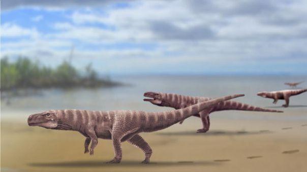 Un estudio que publica PNAS sugiere que únicamente el impacto del asteroide podría haber creado condiciones desfavorables para los dinosaurios en todo el mundo.