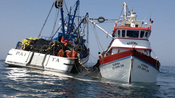 Según la presidenta de la Sociedad nacional de Pesquería, Cayetana Aljovín, en el Perú hay alrededor de 250 mil pescadores.