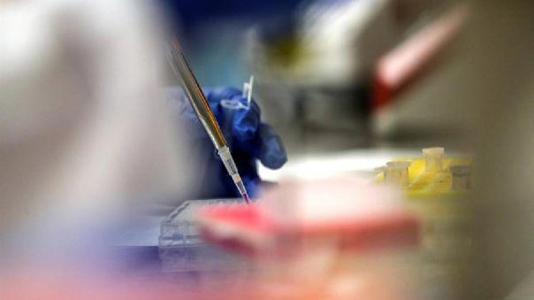Sin embargo, estimaron que para finales de este año se podrían tener resultados sobre la eficacia de las vacunas candidatas.