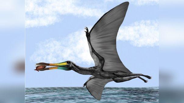 Ilustracíón del paleontólogo colombiano Edwin Cadena que muestra un pterosaurio.