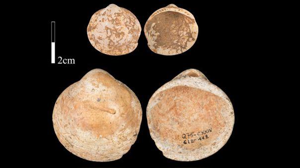 Adornos en el Paleolítico Medio
