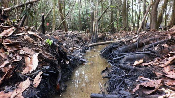 Dos de cada tres vertidos de petróleo acontecidos desde el año 2000 en la Amazonía peruana se debieron a corrosión, fallas operativas o condiciones inseguras de las instalaciones.