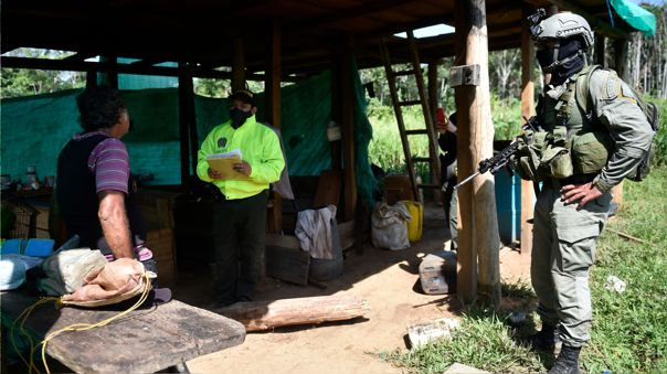 COLOMBIA-CONFLICT-DEFORESTATION-COCA GROWERS
