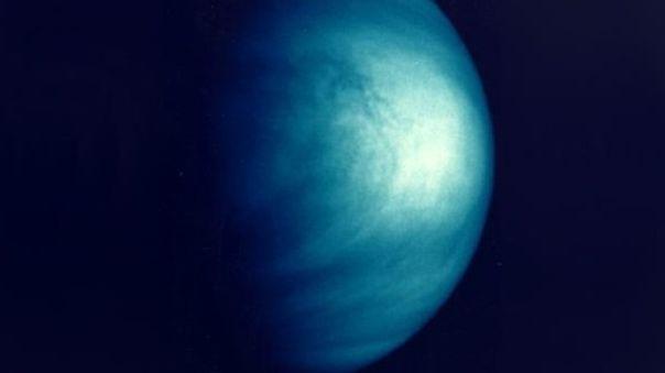 Venus - Fotografía referencial