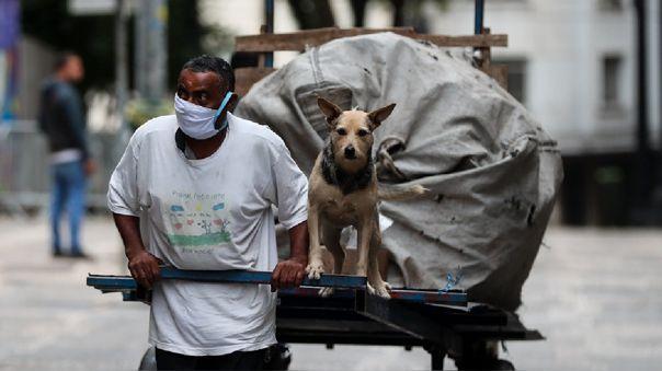 Domesticación de perros