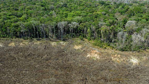 La deforestación, los incendios y la minería ilegal han aumentado en los últimos ocho años