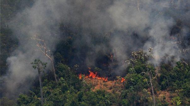 Incendios forestales aumentaron en Brasil durante 2020