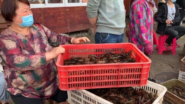 Pruebas realizadas durante 2020 en otros mercados de Wuhan y de mayoristas no encontró que el virus circulara entre los animales.