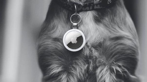 Apple no recomienda el uso de los AirTags en perros o niños