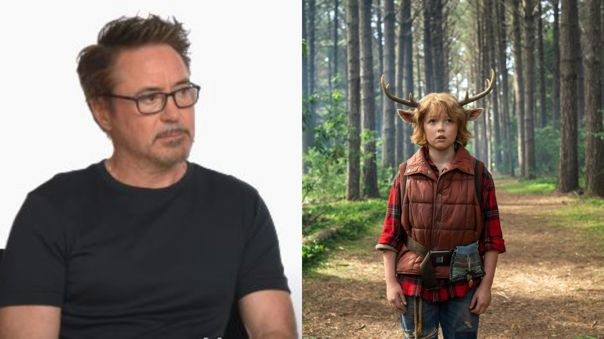 Robert Downey Jr. sobre