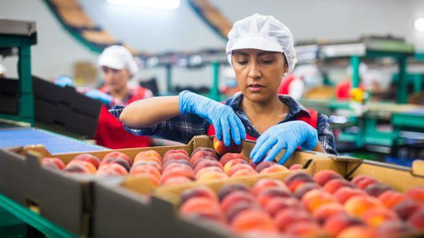 Cinco aspectos clave para reactivar la economía y generar empleos de calidad