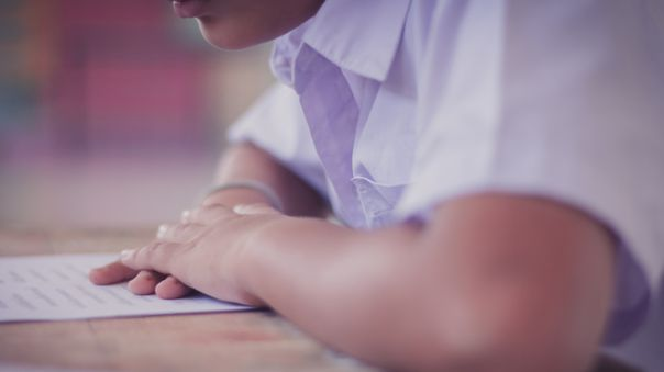 Los principales motivos por los que los escolares abandonan la educación básica regular son los problemas económicos, familiares y la falta de interés.