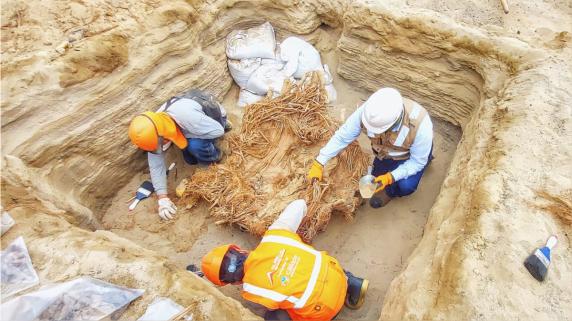 Hallazgo arqueológico en Chilca