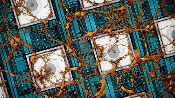 Samsung: datos cerebrales en chips