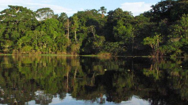 Ecosistema amazónico en Perú