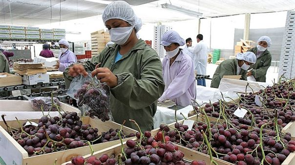 Agroexportaciones de Perú