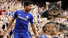 Facebook: Diego Costa reveló que mató a su propio perro