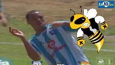 Youtube: abejas asesinas paralizan el duelo entre Alianza Atlético y Huancayo