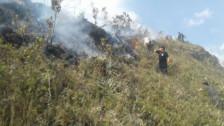 Incendio forestal arrasó con bosques en Cutervo