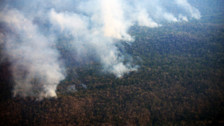 Un incendio forestal arrasa 20 mil hectáreas en la selva central