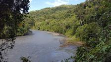 Comunidad matsiguenka logra convertir su territorio en nueva área de conservación privada